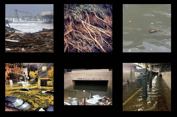 Featured image for Instagram Saw Over 800,000 Photos From Hurricane Sandy