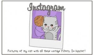social media cats