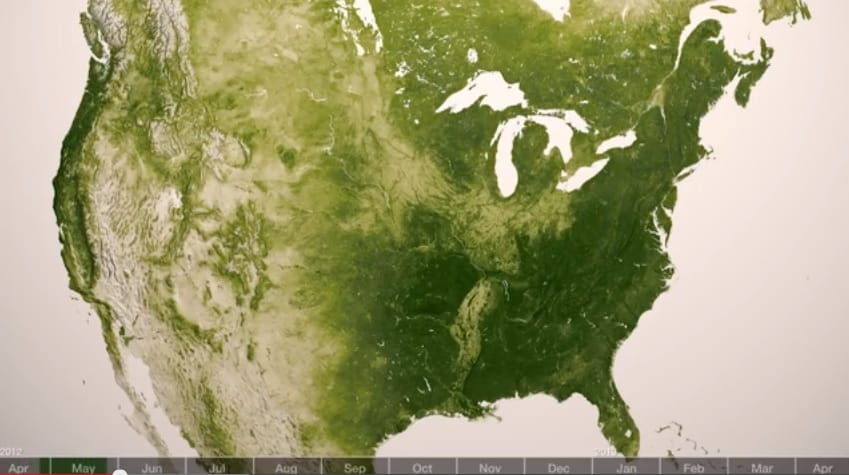 NOAA Satellite Vegetation Images Show Just How Green Earth Is - Noaa world satellite map