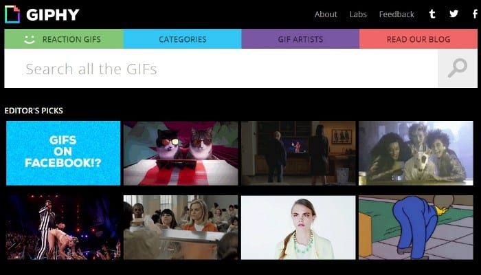 Featured image for Animated GIFs Now Work On Facebook Thanks To Giphy