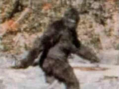 Featured image for Bigfoot Spotted On Google Earth? That, Or Some Guy Taking A Leak [Video]