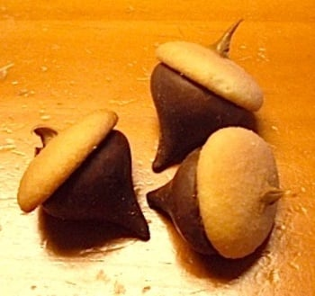 Chocolate Kiss Acorn TreatsChocolate Kiss Acorn Treats