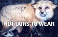Joe Namath Coat PETA