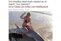 hot girl poses with dead shark