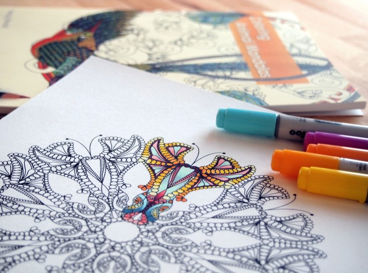 New Coloring Book : Adult coloring books are the new stress busters [video]