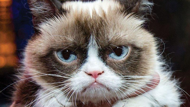 #GrumpyWax