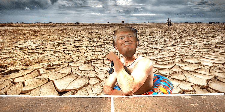 trump no drought in california