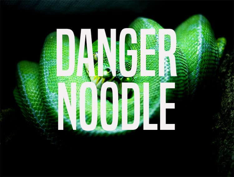danger noodle and more when the internet names animals