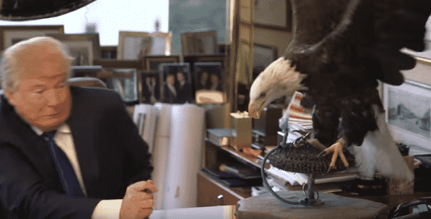 Donald trump eagle trump's not so brave moments that will leave you in a fit of giggles