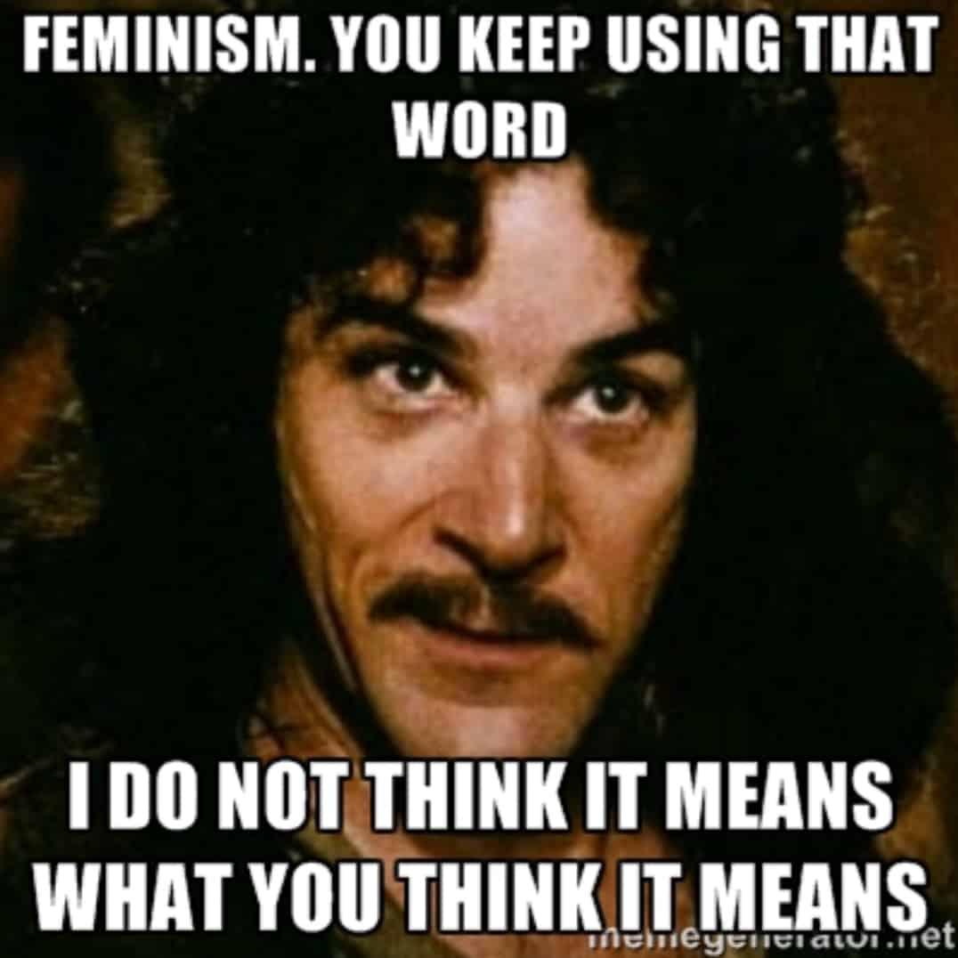 Image result for feminism meme