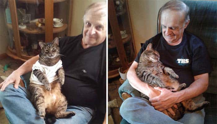 Featured image for Adorably Bossy Cat Demands Cuddles From His Dad For Half an Hour Every Morning