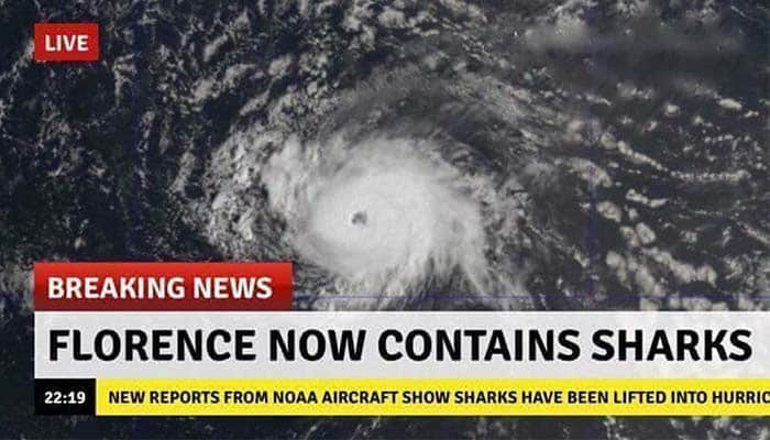 People Are Genuinely Concerned That Florence Has Become a Sharknado
