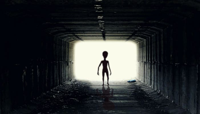 There's a New Book About People Who've Had Sex with Aliens and We Don't Know Whether to be Fascinated or Horrified