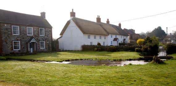 "PETA Demands English Village Called Wool Change it's Name Because it Advocates ""Animal Cruelty"""