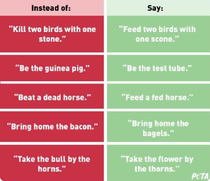 Featured image for PETA Compares Animal Idioms To Racism, Demands End To Them; Gets Dogged Online Instead