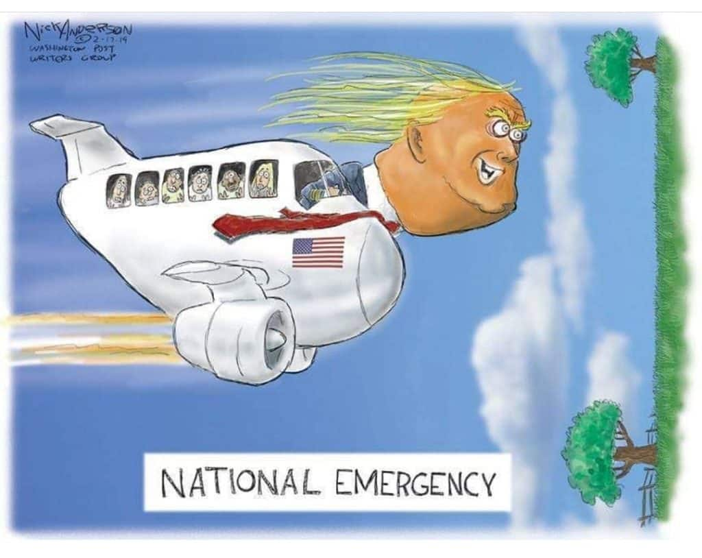 state of emergency political cartoons